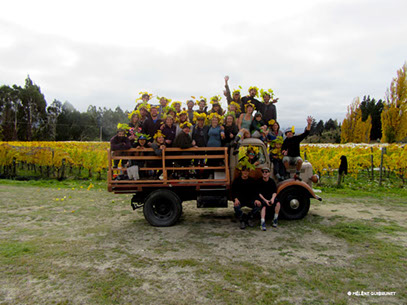 Photos de fin de vendanges chez Rippon